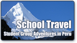 Shool Travel